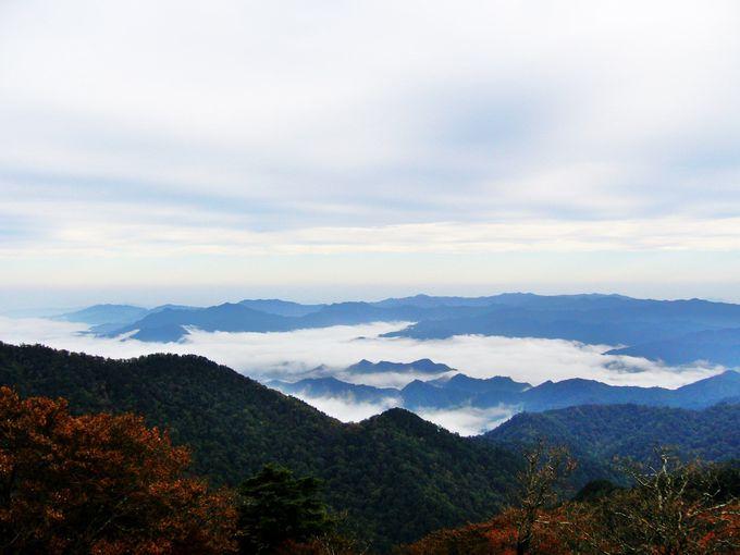 日本百名山「大台ケ原」は伝説の残る神秘の山