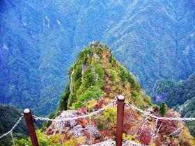 「大蛇嵓」に息を飲む!日本百名山「大台ケ原」東大台コースを歩く|奈良県|トラベルjp<たびねす>
