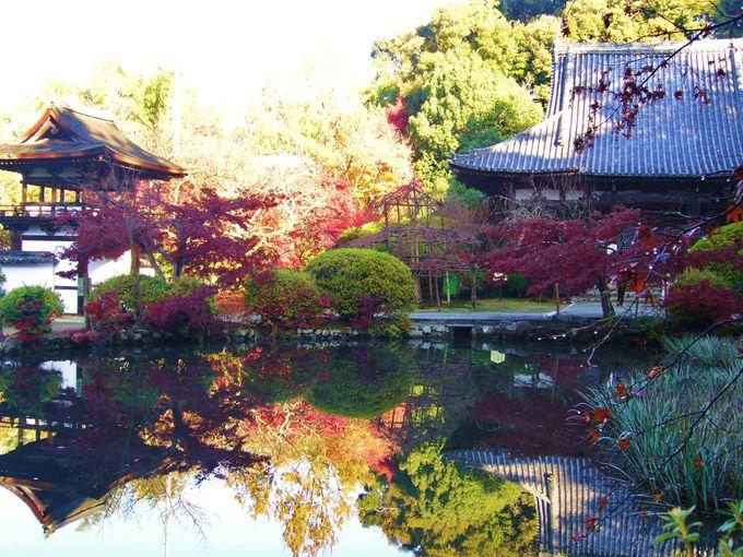 日本の紅葉百選「長岳寺」で地獄に会う
