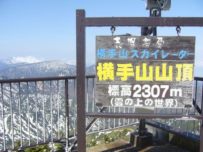 大自然に抱かれた白い高原・志賀高原の最高峰「横手山」