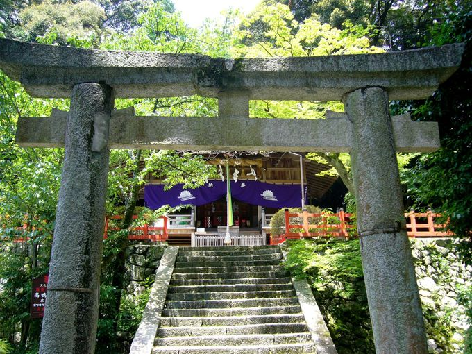 古代鴨族発祥の地をゆく「高鴨神社」