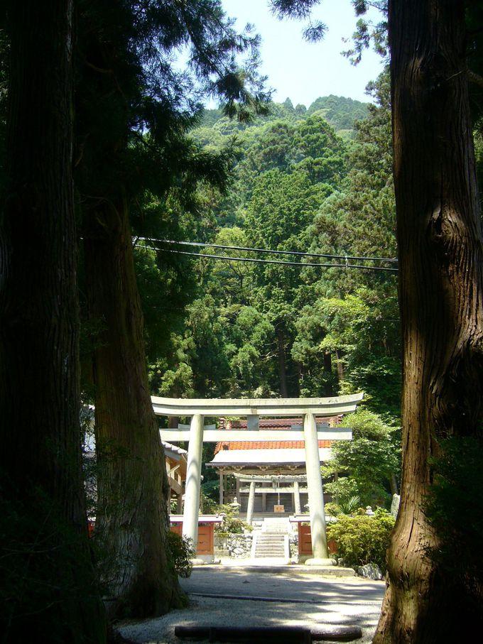 豪族葛城氏の祖神を祀る「高天彦(たかまひこ)神社」