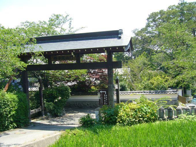 神話の里で長谷寺式の十一面観音像を拝する