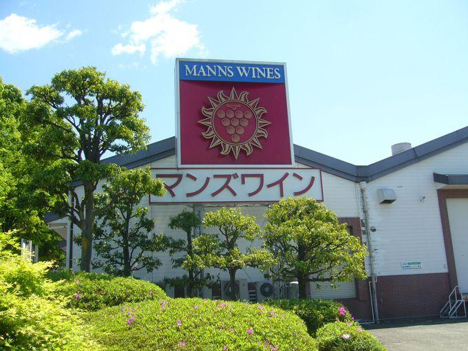 醤油の醸造メーカー・キッコーマンが造る「マンズワイン」
