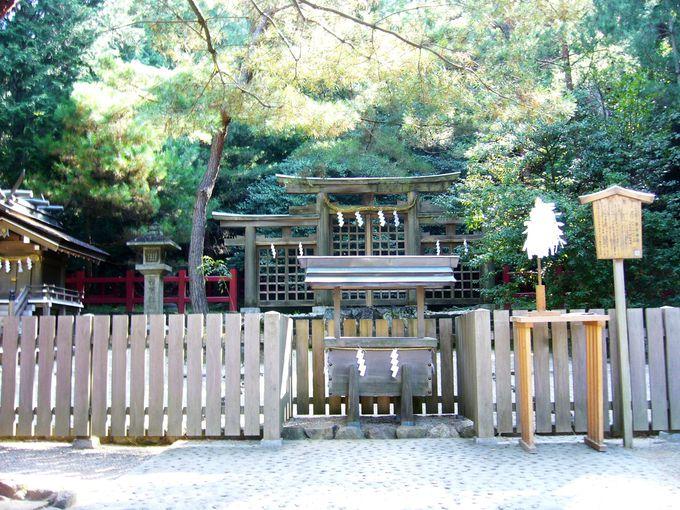 三つの鳥居が連結した独特の形の三ッ鳥居は必見「檜原神社」