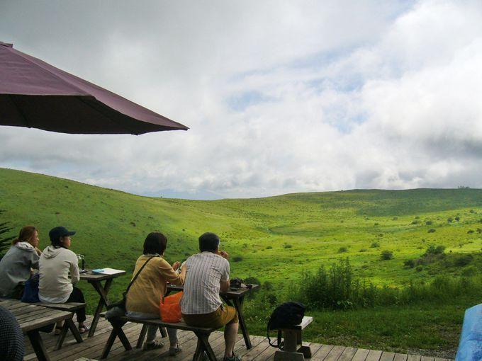 風吹き渡る、草原のカフェ「ころぼっくるひゅって」