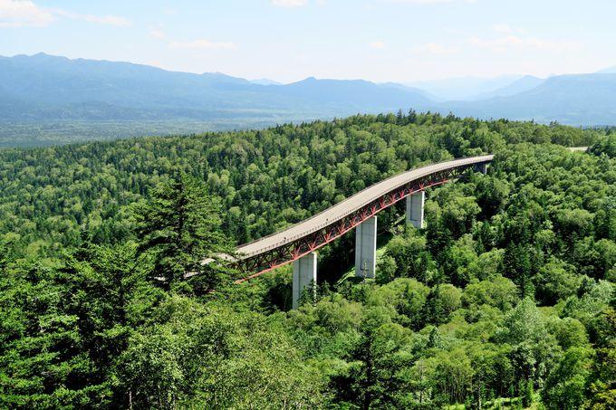十勝の北の玄関口、「三国峠」からの山麓に広がる大樹海の絶景を堪能