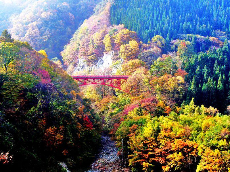信州「松川渓谷」を彩る鮮やかな紅葉美と滝を満喫ドライブ