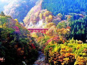 信州「松川渓谷」を彩る鮮やかな紅葉美と滝を満喫ドライブ|長野県|トラベルjp<たびねす>