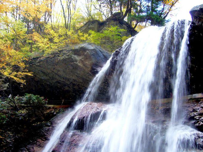 滝裏の岩屋から迫力の大音響と水しぶきを体感!「雷滝」