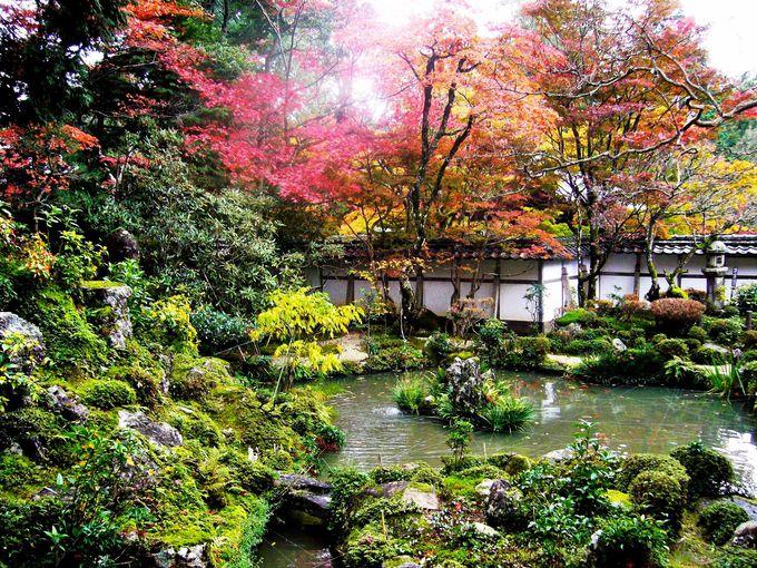 小堀遠州の庭を手本にした「蓬莱庭」