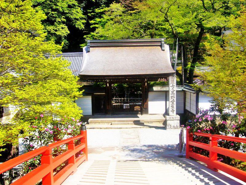 奈良の名刹「室生寺」優雅さと気品溢れるその魅力とは?