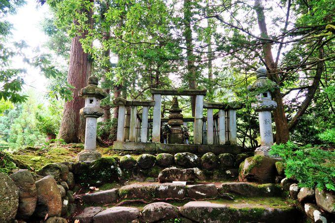 太古の祈りに耳を澄まして結神社で良縁さんぽ