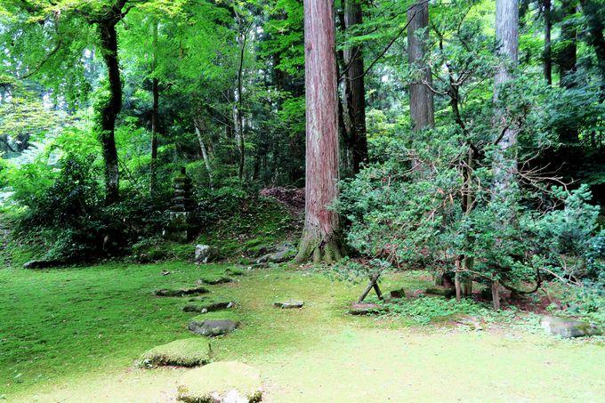 一の鳥居をくぐり、女神伝説の泉を眺める