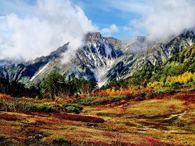 信州白馬「栂池自然園」は驚きの色彩美!白・赤・緑の三段紅葉を堪能|長野県|トラベルjp<たびねす>