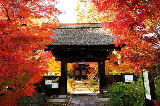 寺めぐり遊歩道からはずれる飯山駅近くの名刹