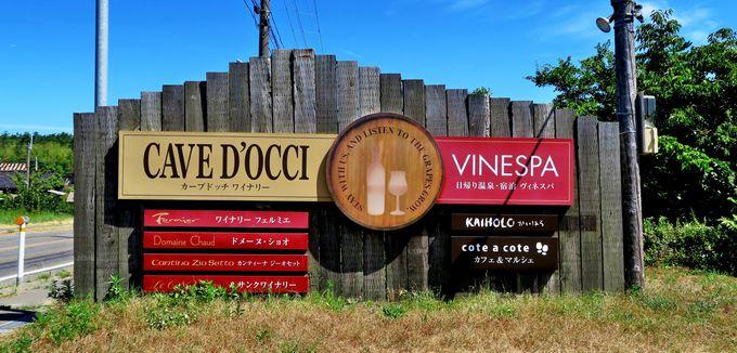 新潟・角田浜に広がる新しいワイン名醸地「新潟ワインコースト」