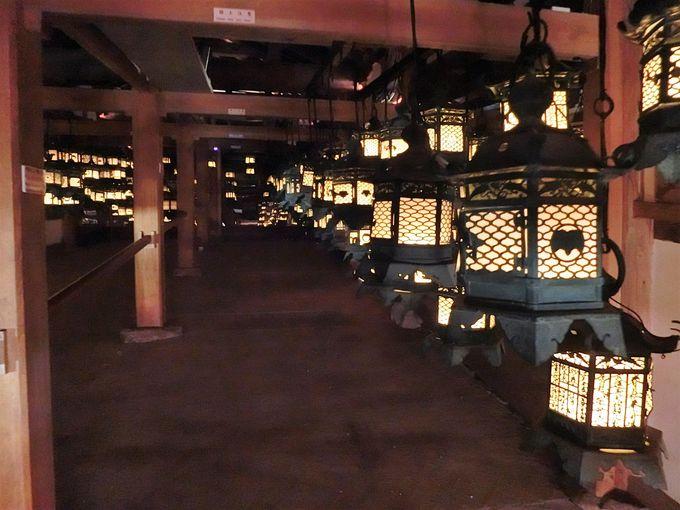 藤波之屋で幻想的な万灯会体験