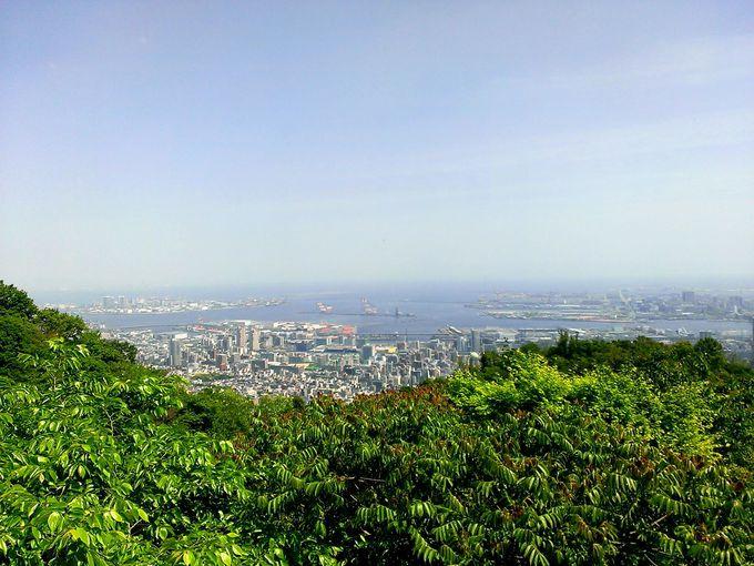 ロープウェイから眺める神戸の街並みは絶景です