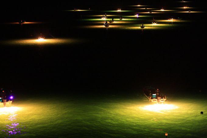 これぞ絶景!無数の舟が煌めくシラスウナギ漁
