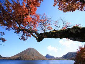 絵画のような紅葉の景色!群馬県の真ん中、榛名エリアへ|群馬県|トラベルjp<たびねす>