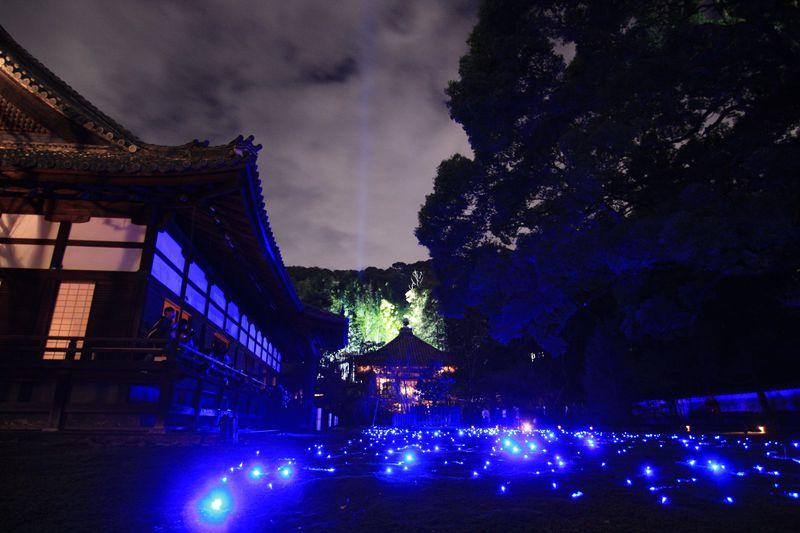 12月上旬まで楽しめる!京都・青蓮院のライトアップ