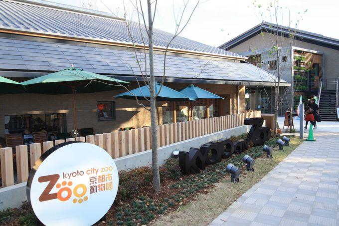 18.京都市動物園