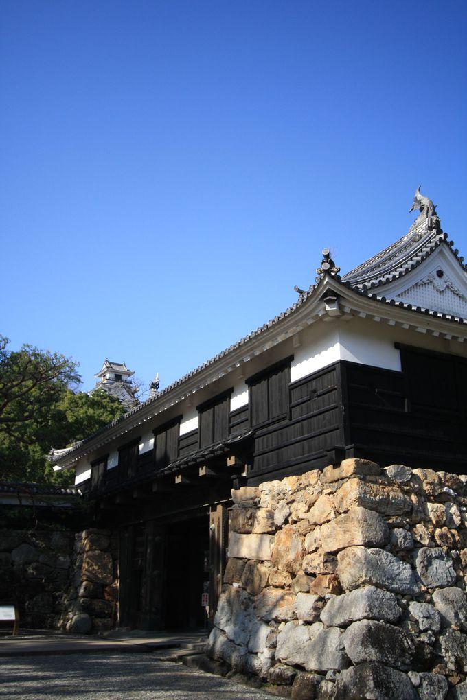 日本の100名城の一つ!高知城
