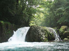 滝も巨木も渓流も!熊本「菊池渓谷」の魅力を写真に収めよう|熊本県|トラベルjp<たびねす>