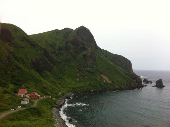 礼文島の自然景観