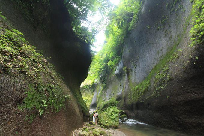 緑豊かな「由布川渓谷」でマイナスイオンを浴びよう