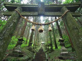 阿蘇「上色見熊野座神社」の神秘的な雰囲気は…まるで異世界への入口!