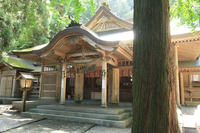 パワースポット「高千穂神社」で夜神楽を体験しよう