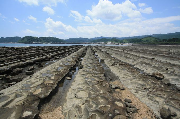 亜熱帯植物の茂る神話伝承の島「青島」の見どころとは