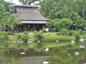 熊本復興への希望となる!「水前寺成趣園」と「白川水源」は熊本を代表する美しき水スポット|熊本県|トラベルjp<たびねす>
