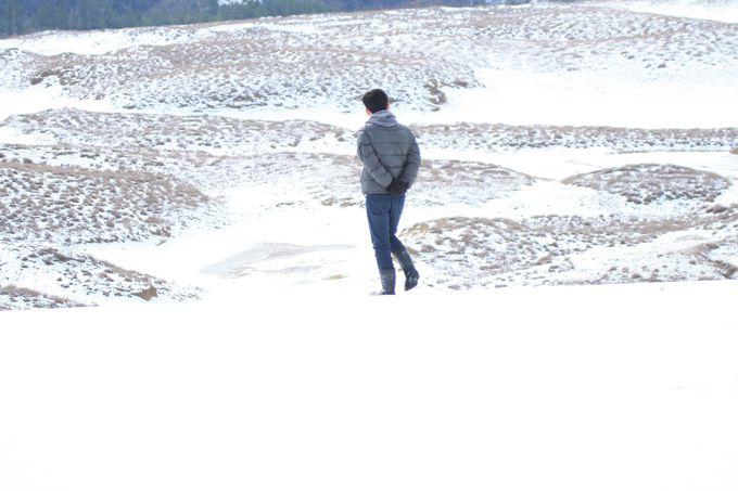 冬に鳥取へ行く時の注意点