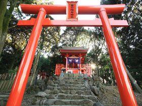 神々しいとは、こういうことさ。佐賀で2つのテッパン神社からパワーを授かろう|佐賀県|トラベルjp<たびねす>