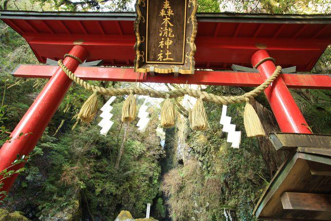 轟の滝があるのは神社の中