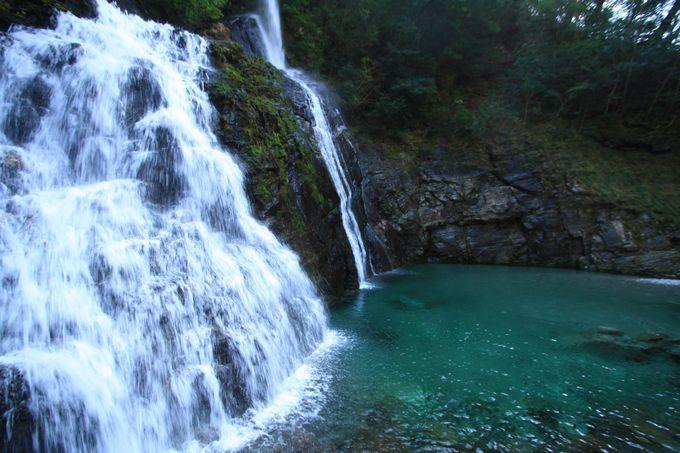 透き通る水に驚愕!「安居渓谷」「にこ淵」