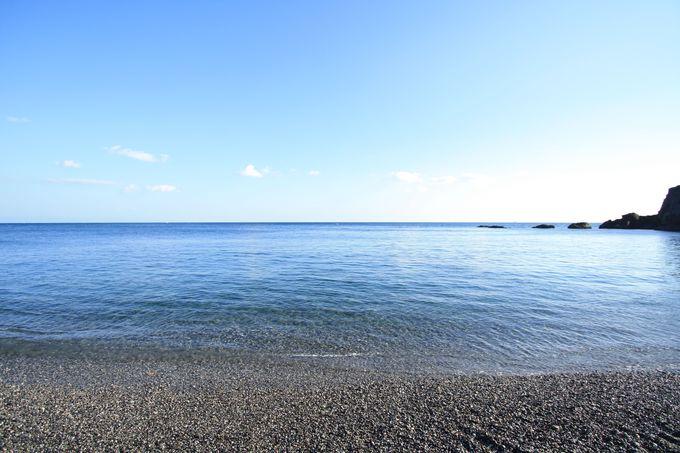 広大な青のロマン!「桂浜」「柏島」