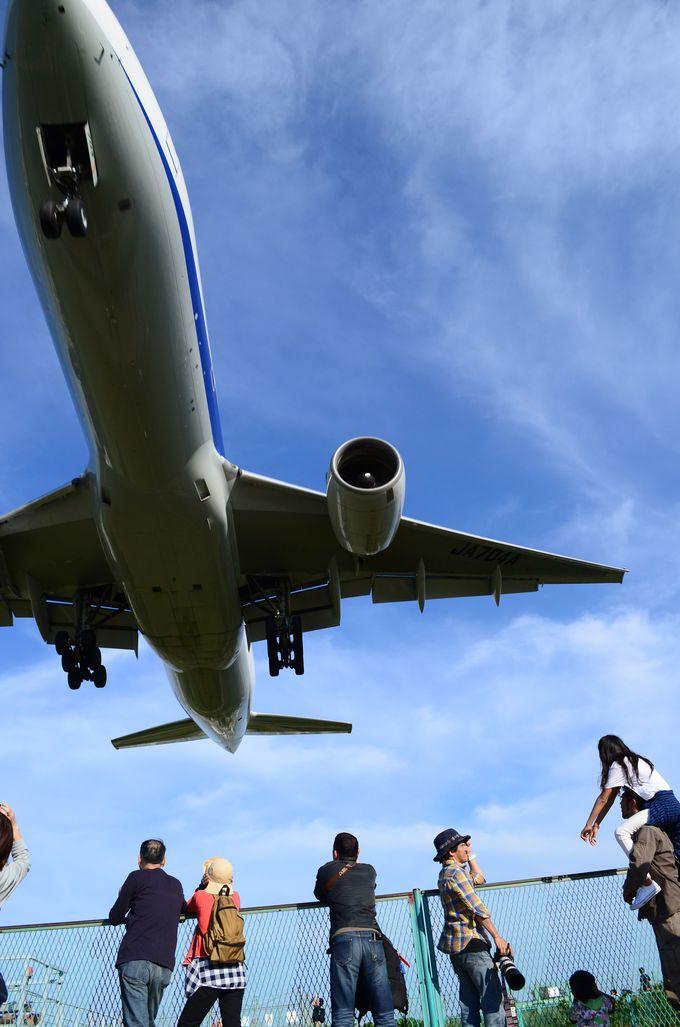 飛行機…近すぎるでしょ!