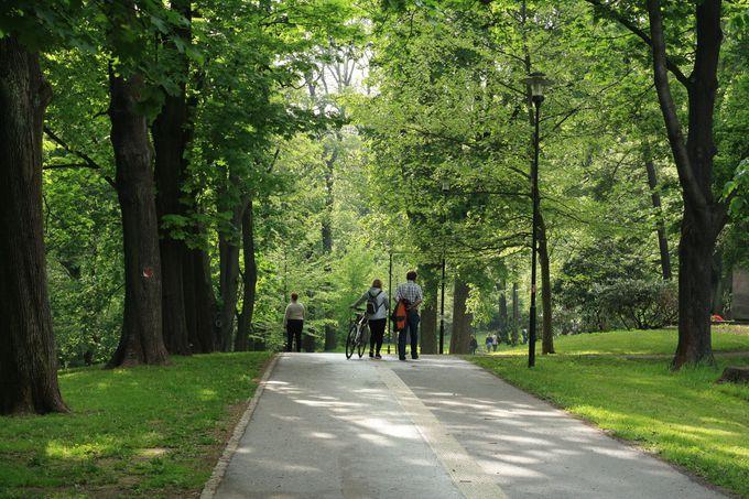 町の周りには緑溢れる公園が