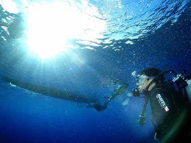 ダイビング初心者でも安心!サイパンが誇る「マリアナブルー」の世界