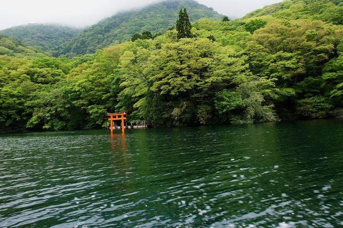 箱根の森に佇む縁結びの神様「九頭龍神社本宮」
