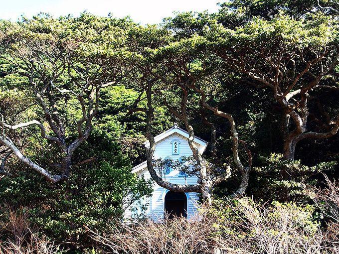 「奈留島」のキリシタン信仰は大村藩から逃れてきた3人の信徒から始まった