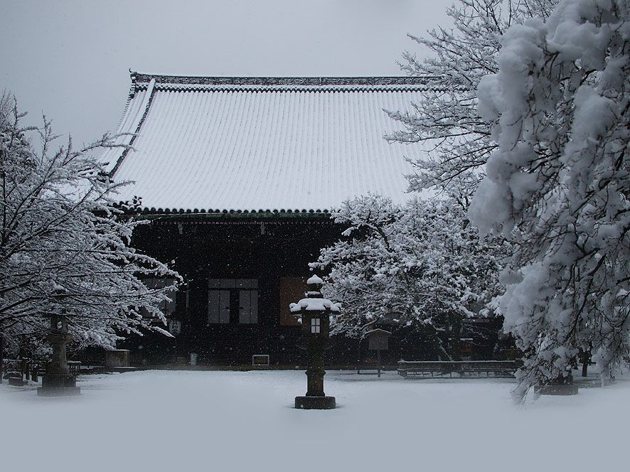 雪が深々と降る京都市内の寺社・庭園は見逃せない別世界
