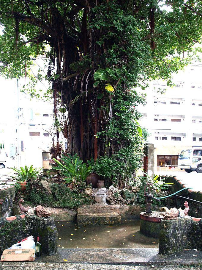 「壺屋やちむん通り」の路地裏には暮らしの史跡もたくさん