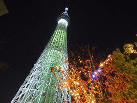 東京スカイツリー夜景を楽しむならここ!「リッチモンドホテルプレミア東京押上」