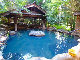まるで渓谷の森!阿蘇・黒川温泉「夢龍胆」で100%源泉掛け流しの湯を堪能|熊本県|トラベルjp<たびねす>