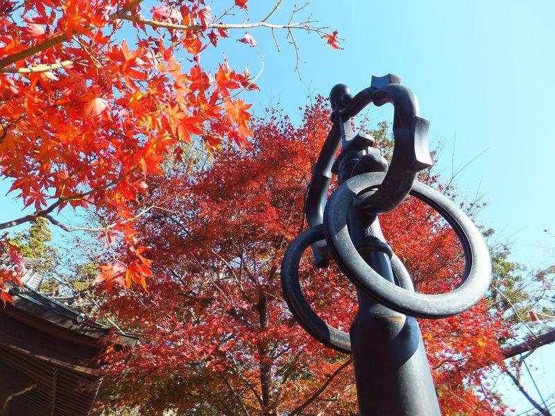パワースポット・高尾山薬王院の紅葉も見事